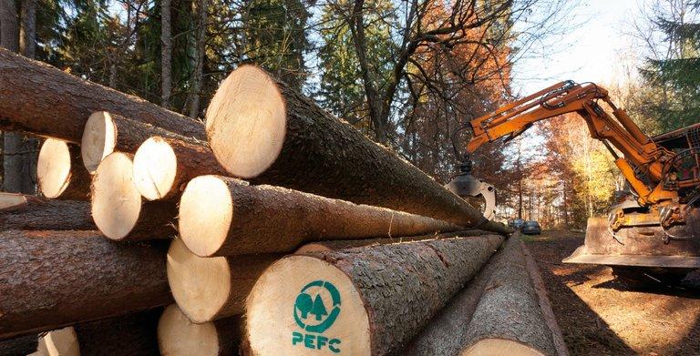 PEFC-zertifiziertes Holz